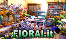 Fiorai a Olginate by Fiorai.it